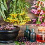 توسعه درآمدزایی از گیاهان دارویی