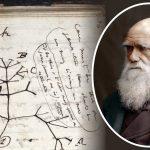 به سرقت رفتن کتاب یادداشتهای چارلز داروین