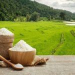 افزایش قیمت برنج ایرانی